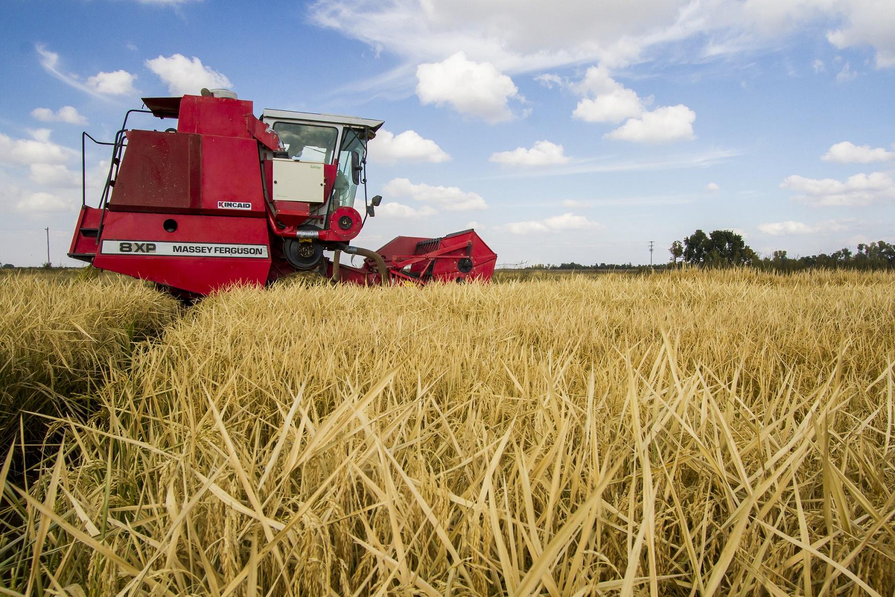 A dependência das commodities agrícolas, como a soja, é um das principais razões do despreparo da América Latina para um crescimento de longo prazo