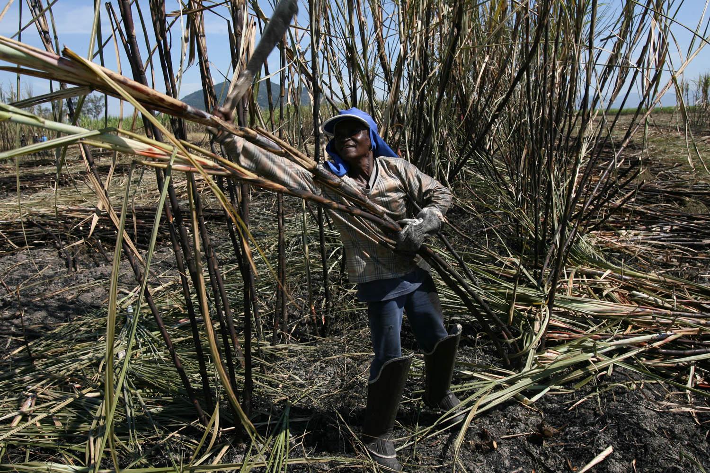 Enquanto continuarmos sendo conhecidos como exportadores açúcar, soja e minério de ferro, seguiremos perdendo espaço no competitivo mercado internacional