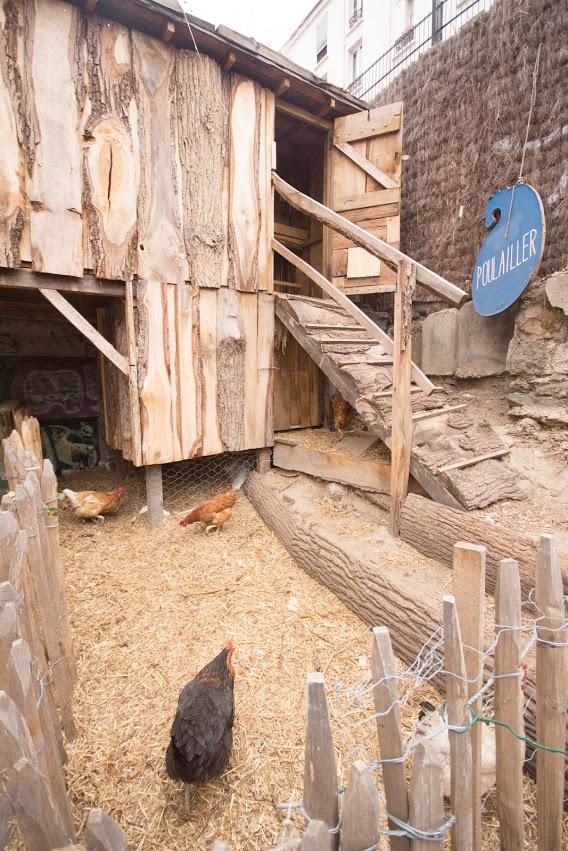 A REcyclerie foi pioneira na criação de uma fazenda urbana. São 19 galinhas, 1 galo e 2 patos comendo os restos alimentares gerados pelo restaurante