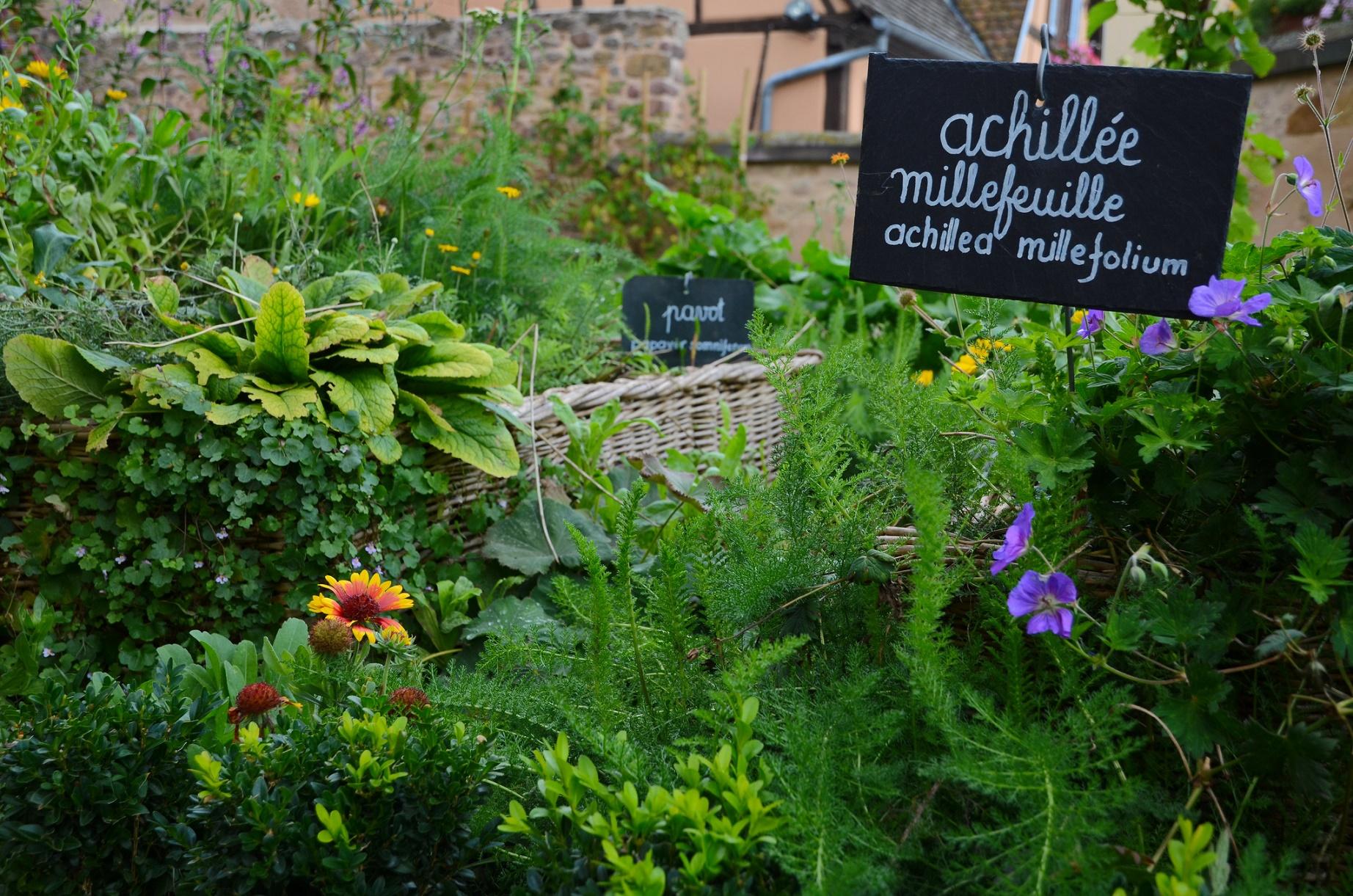 A agricultura urbana é uma das experiências locais que mais ganham espaço no mundo