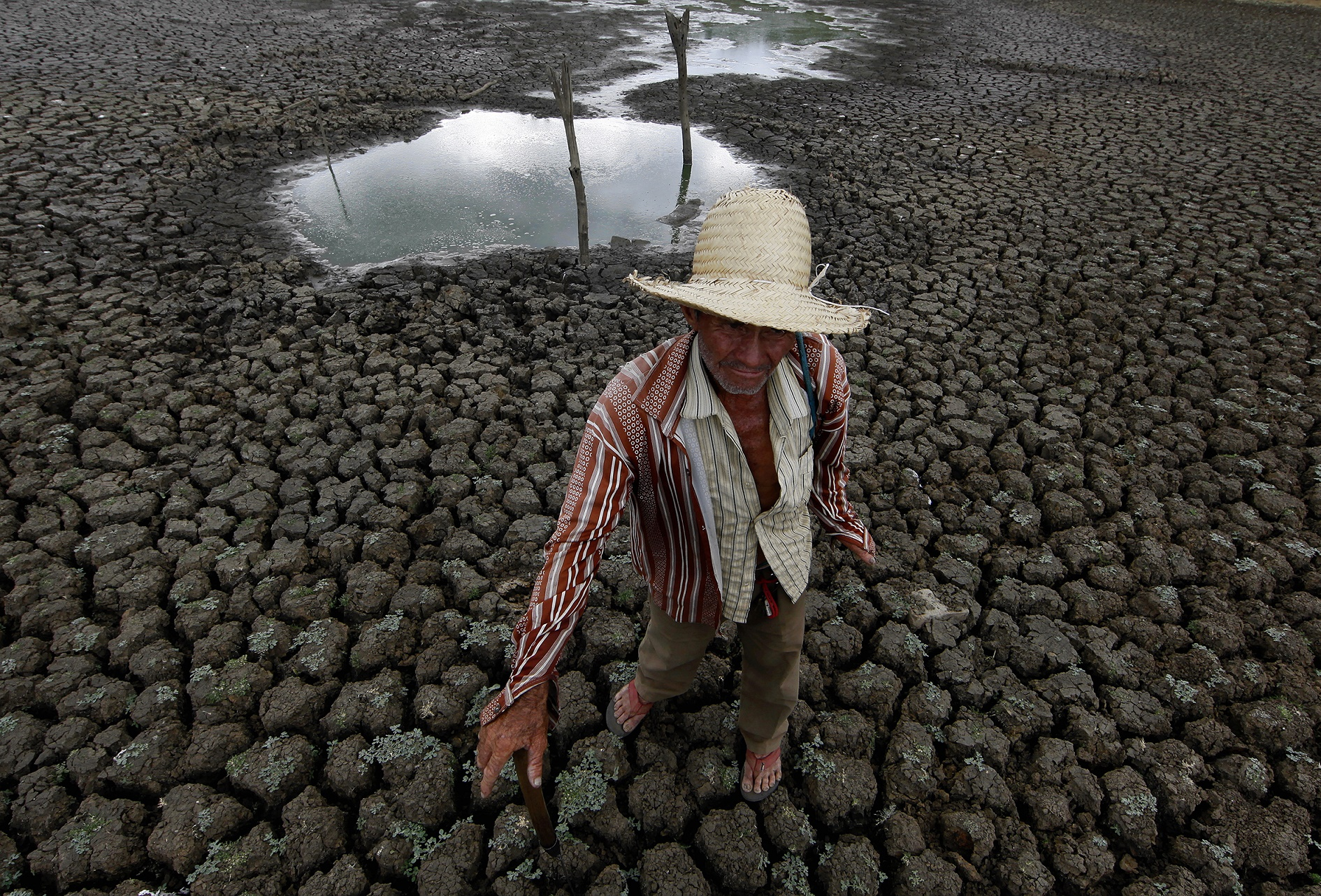 A seca que assola o Nordeste do país, ano após ano, é uma, mas não a principal causa das nossas crises hídricas