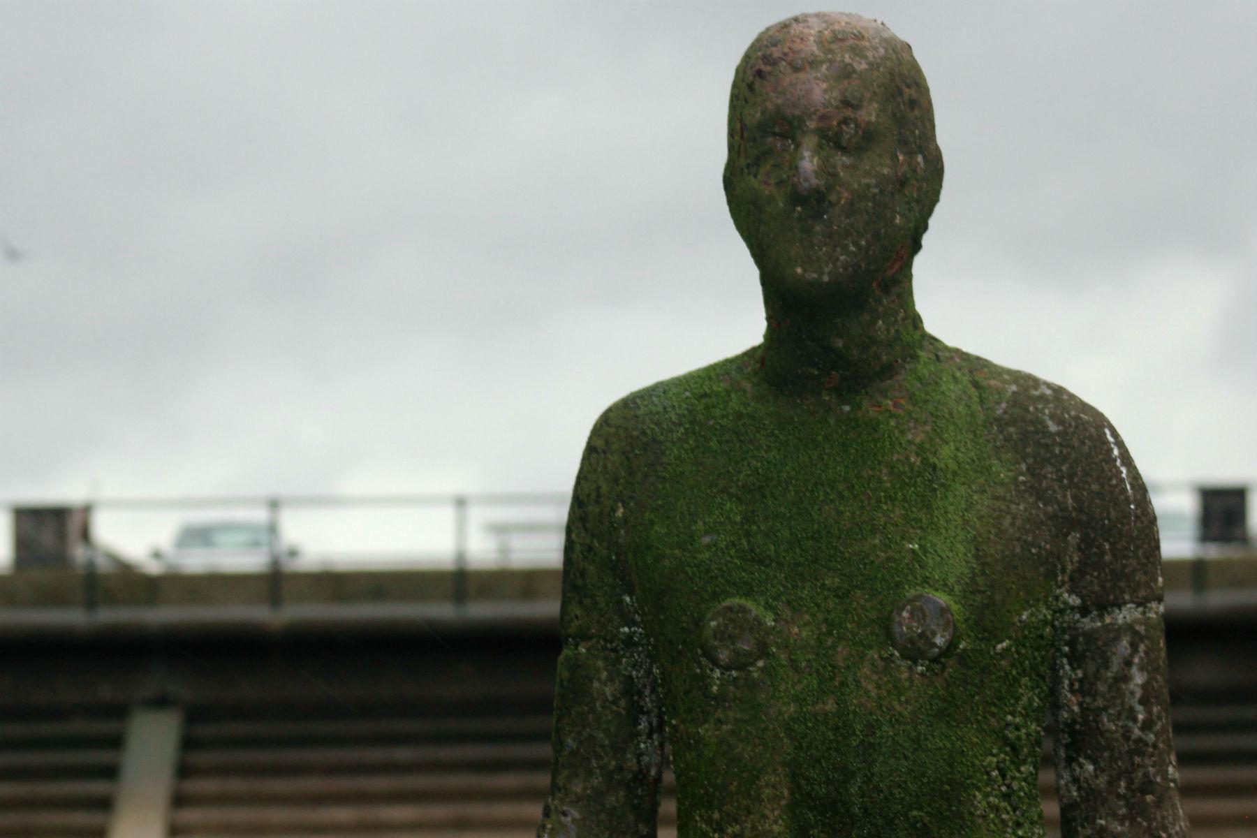 Face a face com um homem de ferro: da mesma altura do criador - 1,89m