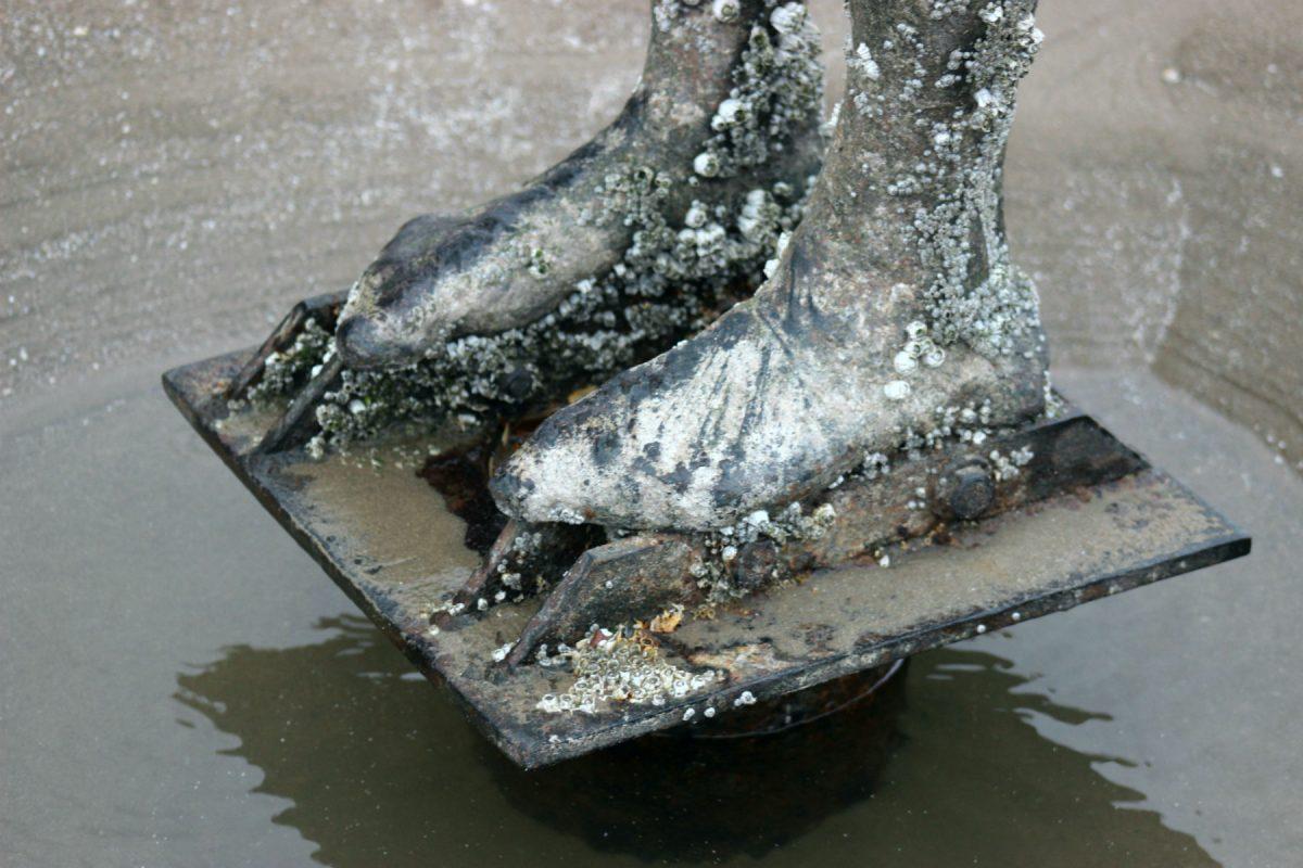 Pé na areia: as cracas transformaram as esculturas e as fundiram com o ambiente