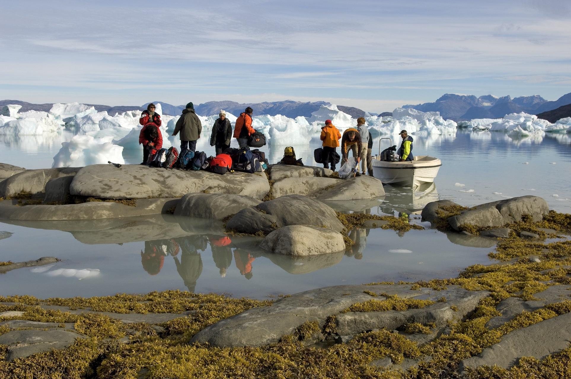A presença de mais dióxido de carbono favorece o crescimento de plantas em regiões polares no hemisfério norte