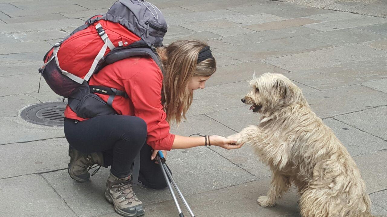 A brasileira Nathália, de Presidente Prudente, foi acompanhada por um cachorro por dezenas de quilômetros até ele ser encontrado pela dona