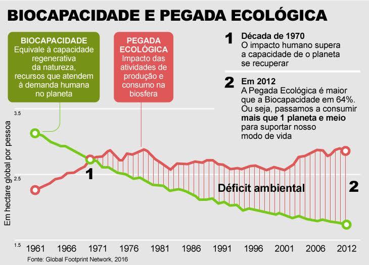 Infografia sobre Pegada Ambiental
