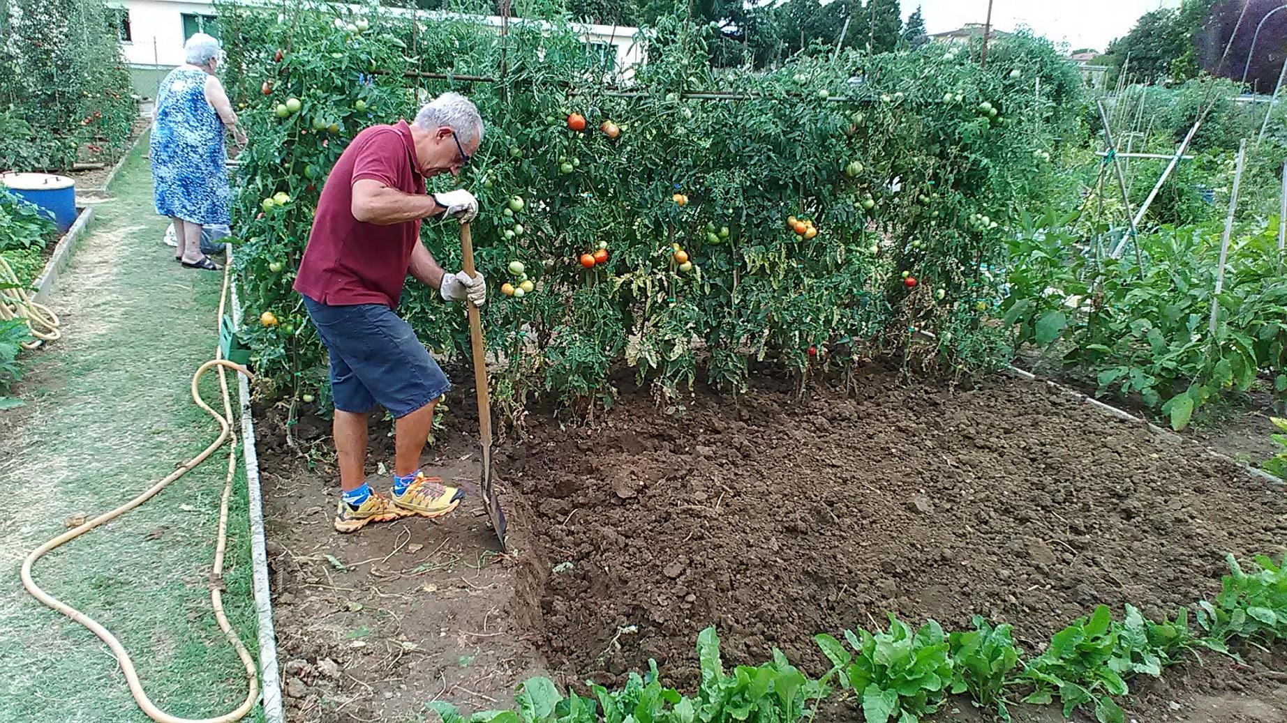 Ativos, idosos aproveitam o trabalho na horta para se reunir, conversar e se divertir. (Foto Luciana Doneda)