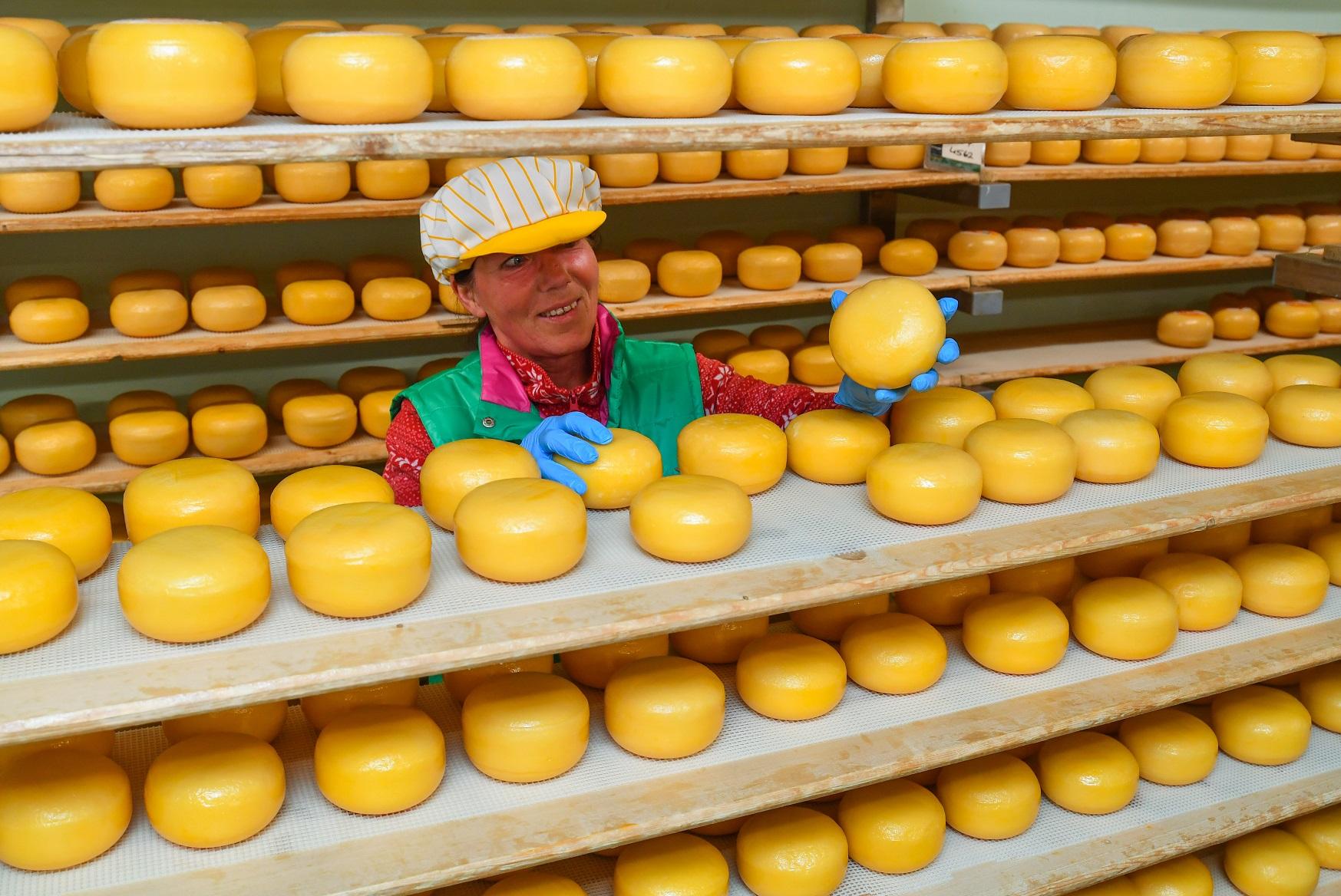 Pesquisa do Ministério da Agricultura mostra que 76% dos alemães preferem os produtos produzidos em sua região. Foto de Patrick Pleul/DPA