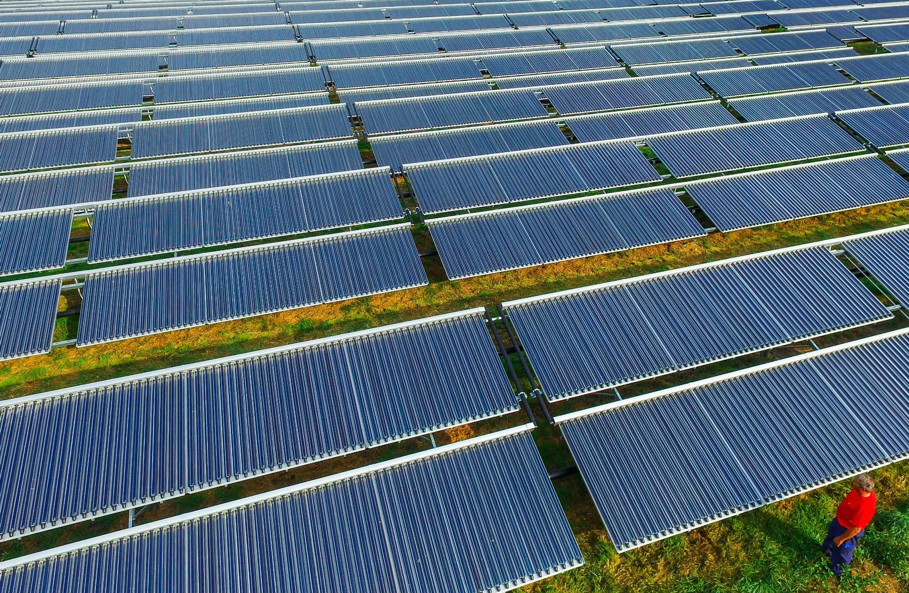 Parque solar/ Foto de Patrick Pleul/ DPA/ AFP