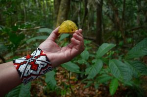 Reveillon na Amazônia. Foto de Kelly Lima