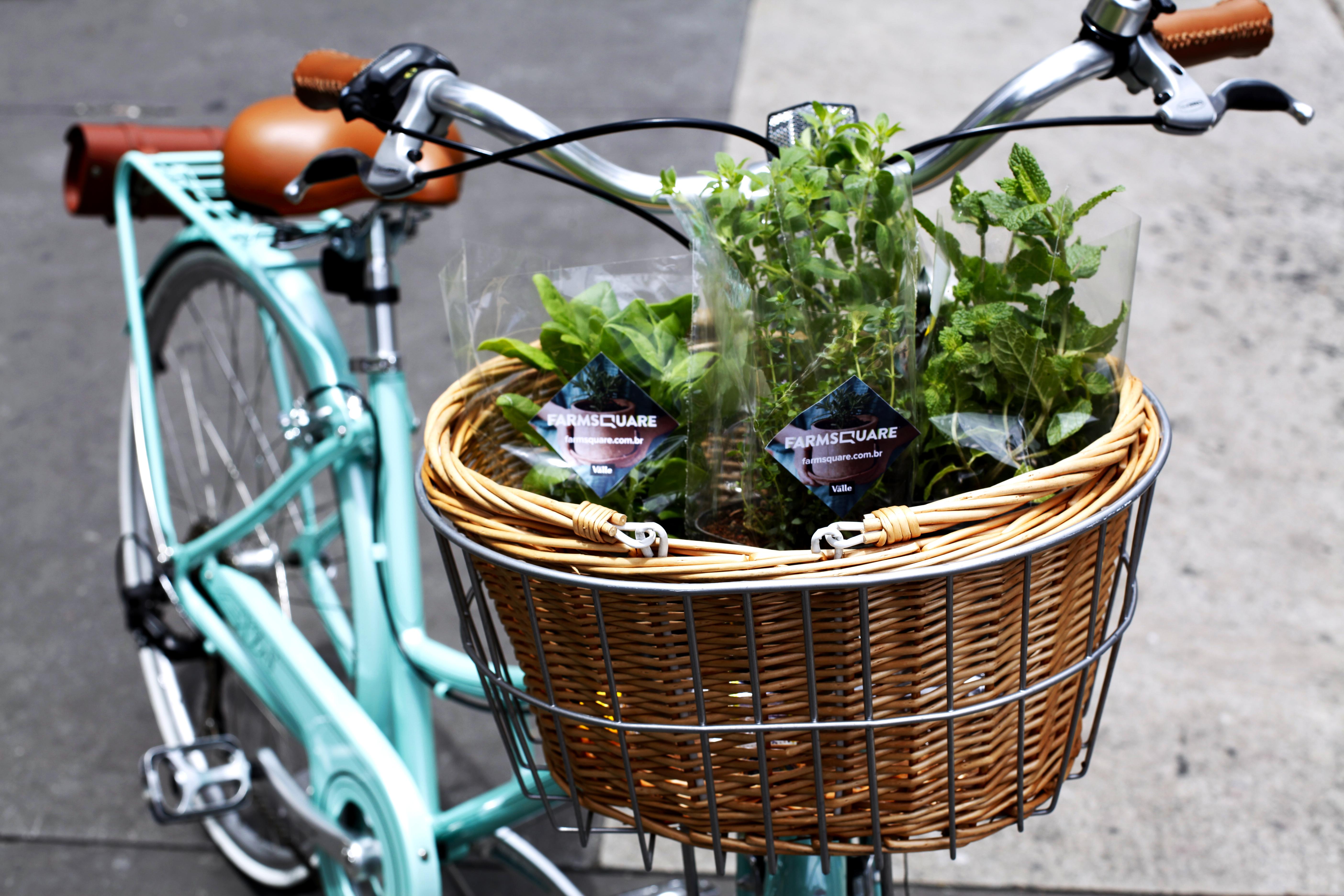 Mudas para fazer uma hora em casa: ação da FarmSquare incentivou o plantio urbano
