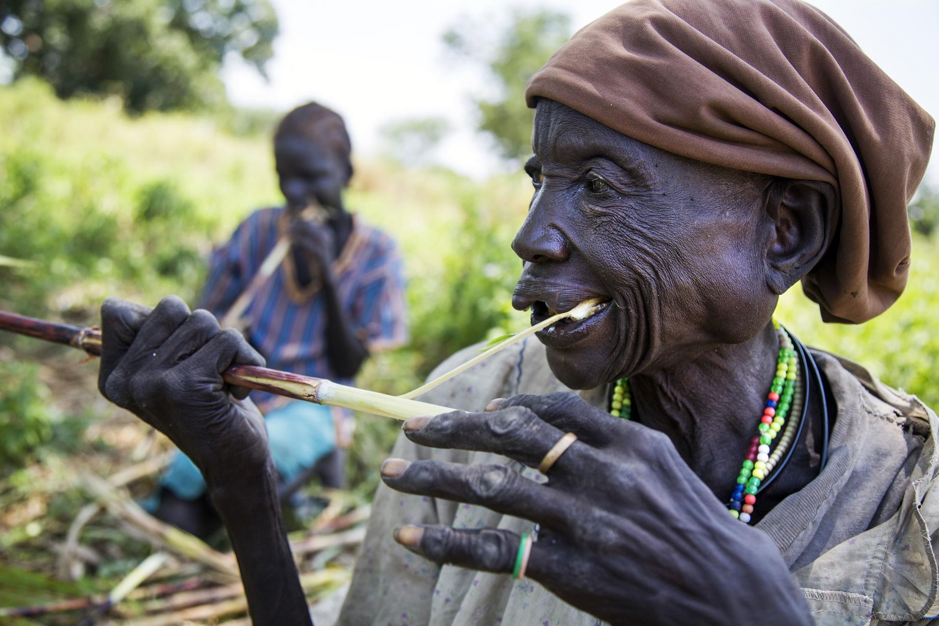 Cerca de um bilhão de pessoas passam fome hoje no mundo. A situação é mais grave na Índia e na África Subsaariana. Foto de Albert Gonzalez Farran/AFP