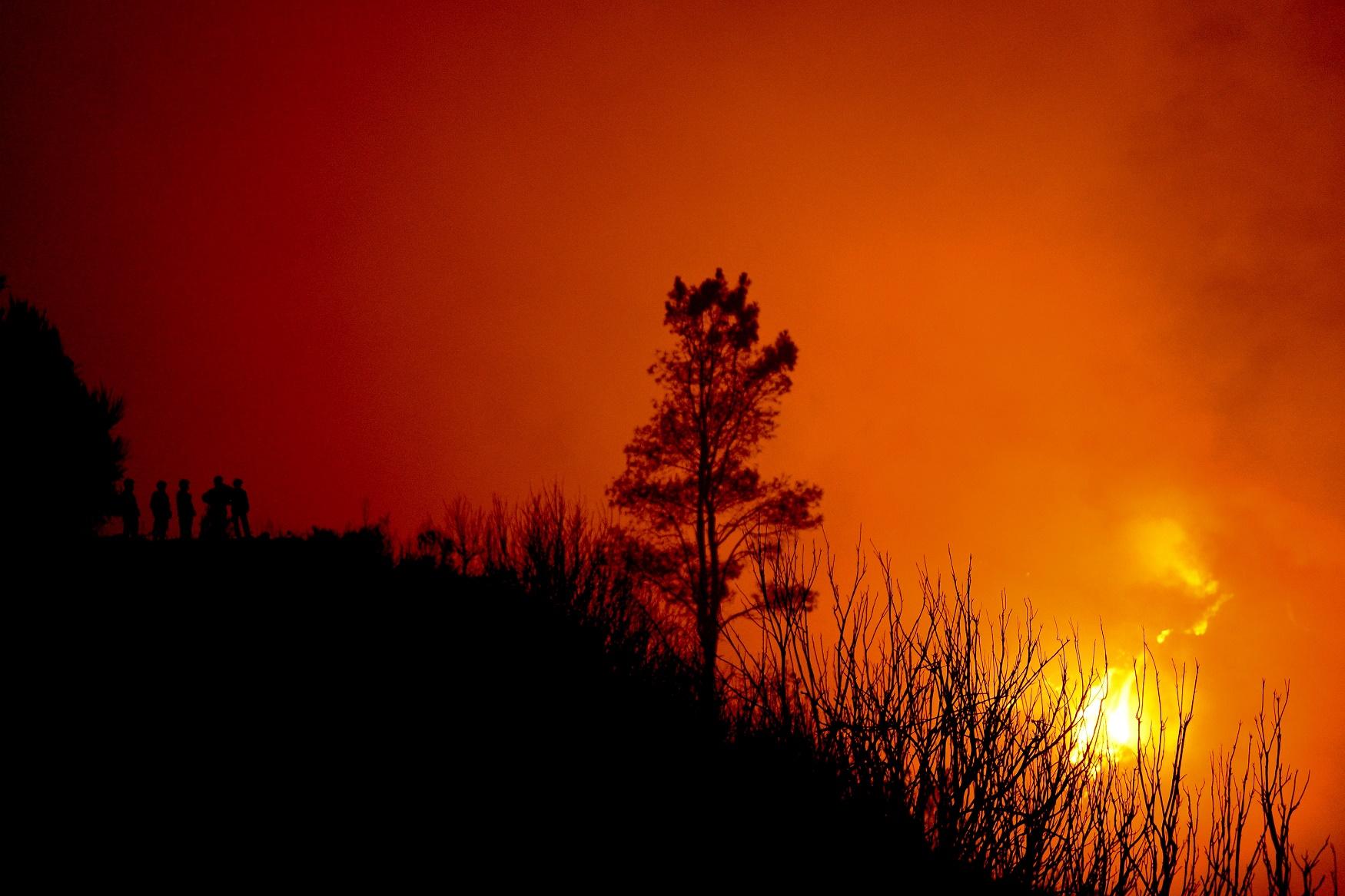 Incêndio na Ilha da Madeira, em agosto de 2016. Ano em que Portugal assumiu a liderança no ranking de queimadas na Europa. Foto de Patrícia de Melo Moreira/AFP