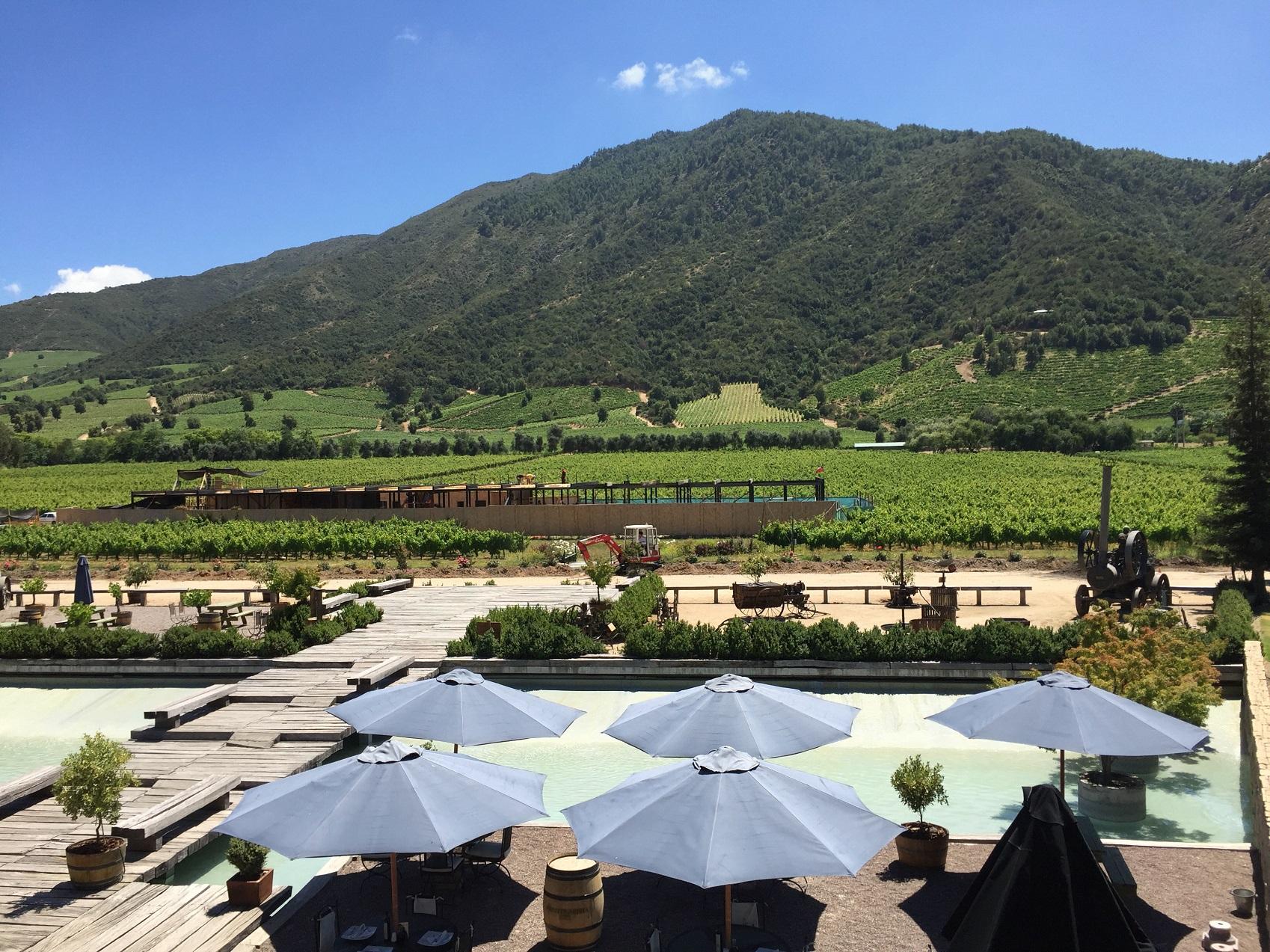 A Viña Montes, uma das mais conhecidas entre as cerca de 20 vinícolas da região, é uma pioneira em dry farming. Foto Carla Lencastre