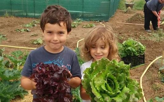 Mãozinhas na terra: As crianças aprendem a lidar com a plantação, a valorizar a natureza e a diversificar o cardápio (Foto Rosane Monteiro)