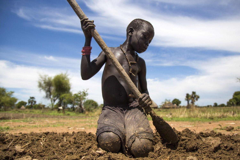O jovem Nyibol Lual, de 13 anos, ajuda a família a preparar a terra para a plantação. O Sudão do Sul, onde vivem, é um dos países mais afetados pela fome no mundo. Foto Albert Gonzalez Farran/AFP