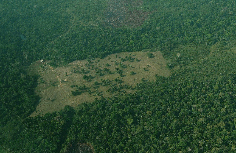 Vista área de um região desmatada na Amazônia. Foto Carl de Souza/AFP