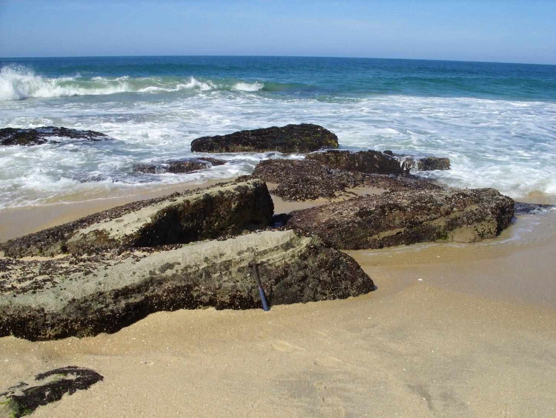 As rochas de Jaconé têm valor histórico para a ciência pois foram descritas por Charles Darwin, em 1832. Foto Kátia Leite Mansur/UFRJ