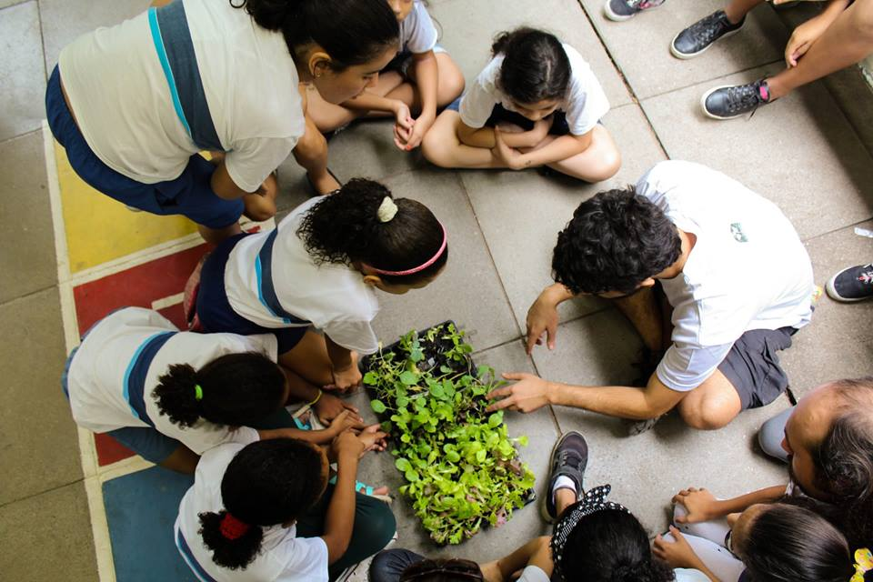 Projeto Quartas Ambientais é realizada no Laboriaux, parte mais alta da Rocinha. Foto de Divulgacao