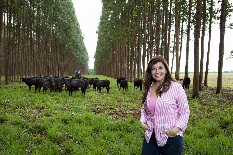 O solo melhorou de qualidade, o pasto começou a exibir sinais de recuperação, o gado engordou.
