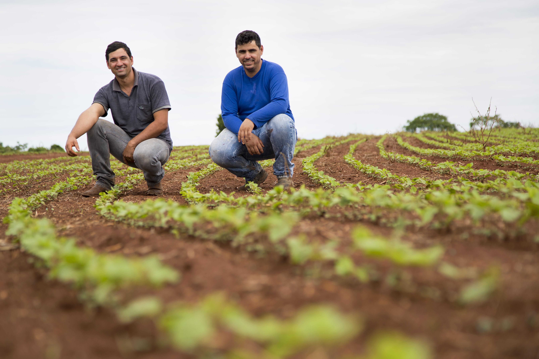 Os irmaos Flavio (de blusa azul de manga comprida) e Rafael que representam a segunda geracao da familia Vaz, produtores de soja em Ipameri. Foto de Simone Marinho