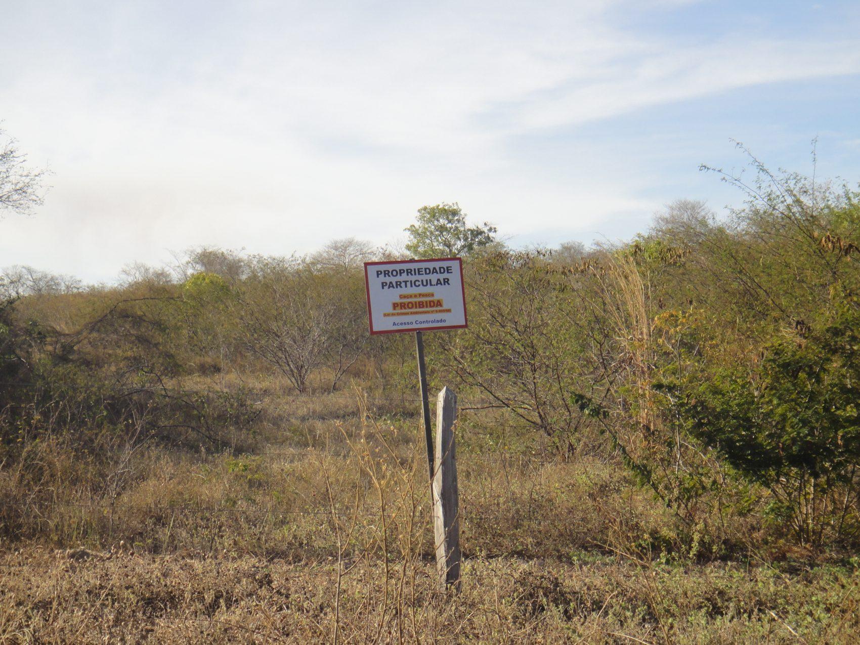 Resultado de imagem para Harvard envolvida com grilagem de terras no Brasil