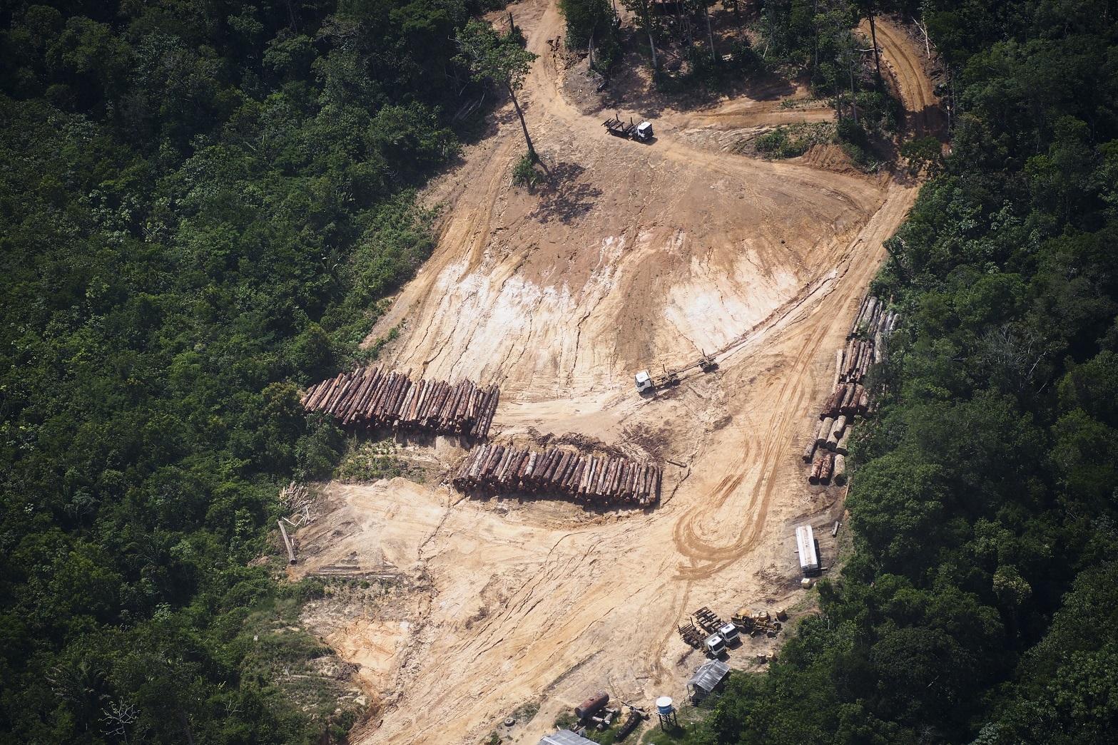 Visão aérea do desmatamento na Amazônia, próximo de Oriximiná, no Pará. Foto Raphael Alves/AFP