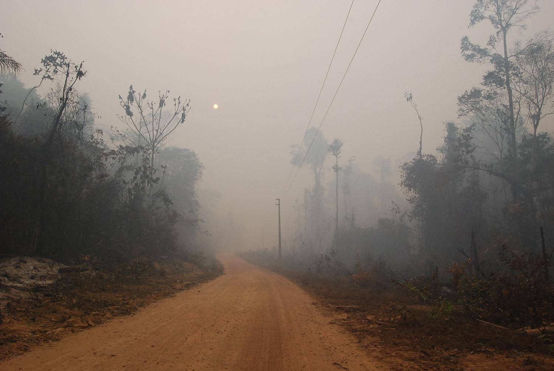 A fumaça dos incêndios se espalha na Amazônia (Foto Erika Berenguer)