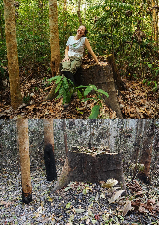 A pesquisadora Erika Berenguer numa foto com o antes e o depois dos incêncios (Foto arquivo pessoal)