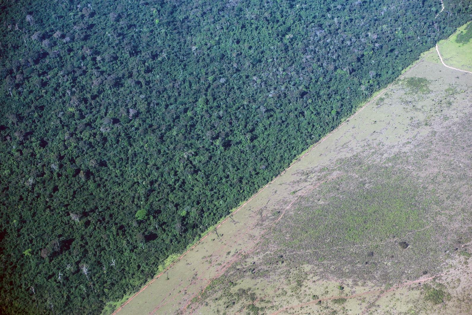 Área de desmatamento na Amazônia é interrompida às margens de uma reserva indígena no Pará. Foto Yasuyoshi Chiba/AFP