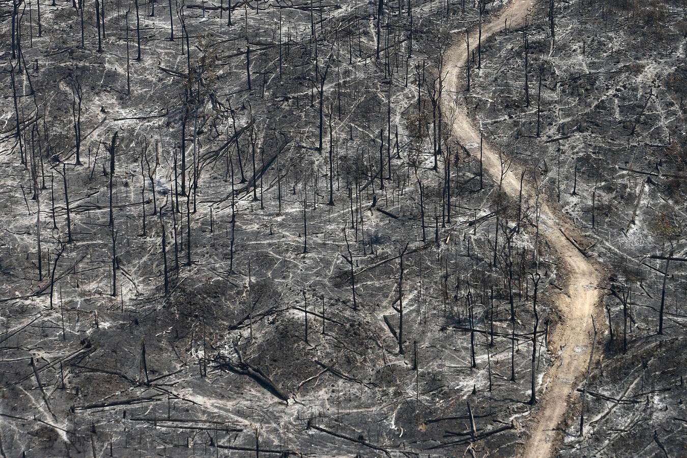 A imagem da destruição causada pela fogo na Amazônia. Foto Rodrigo Baleia/Greenpeace