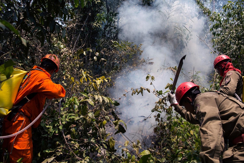 Índios Guajajara da Terra Indígena Arariboia e bombeiros do Maranhão tentam impedir que o fogo avance sobre a parte mais conservada de floresta. Foto: Marizilda Cruppe / Greenpeace.