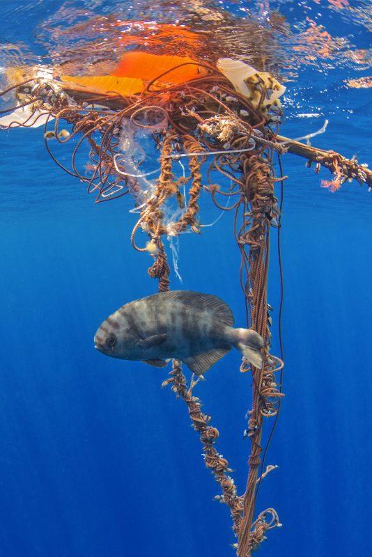 A cada ano, oito milhões de toneladas métricas de plástico vão parar no mar e essa quantidade poderá aumentar em dez vezes se não forem adotadas novas práticas de consumo e reciclagem. Foto Sérgio Hanquet/Fiosphoto