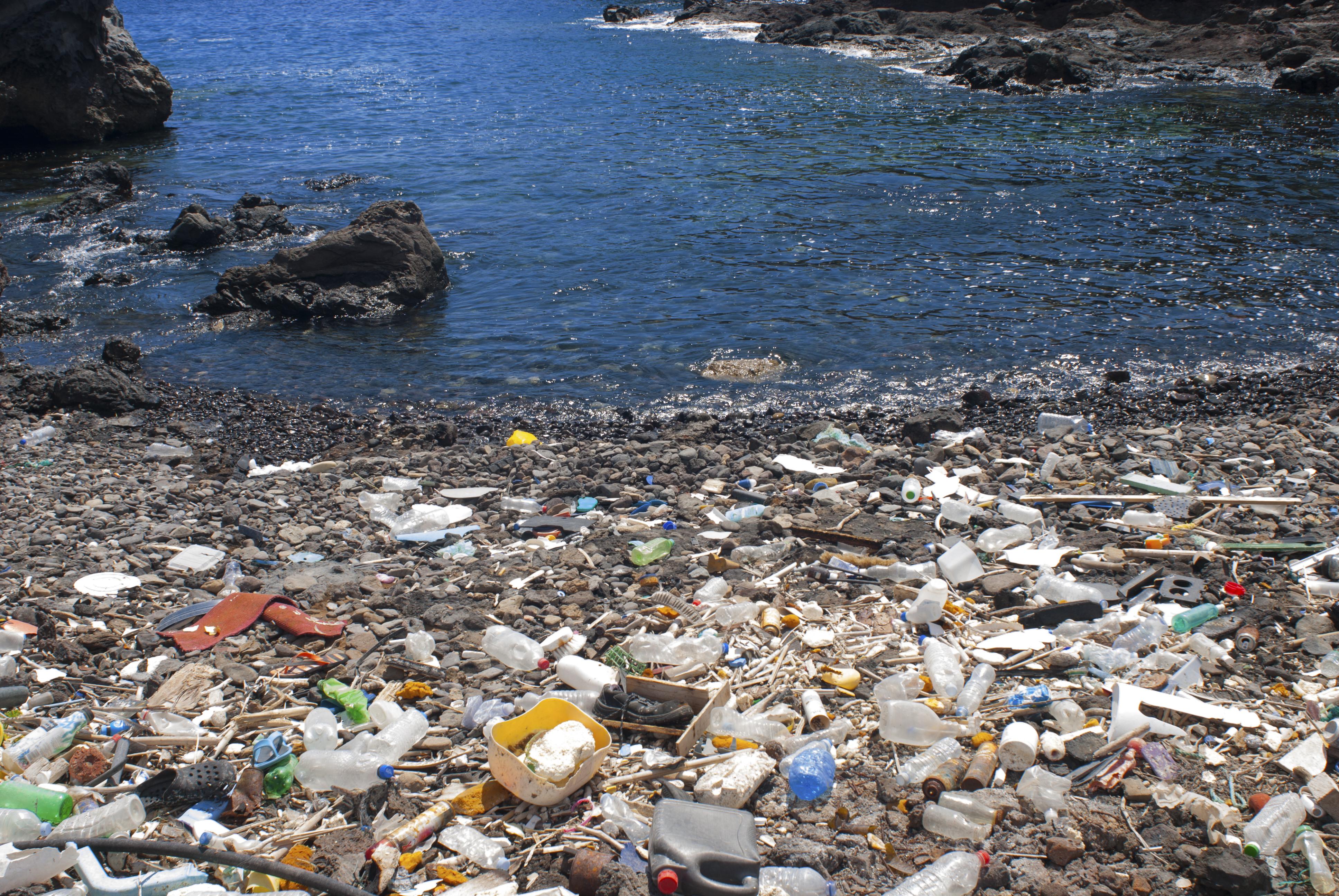 Denúncia de lixo no mar, não importa onde aconteça é problema (Sergio Hanquet/ Biosphoto/AFP)