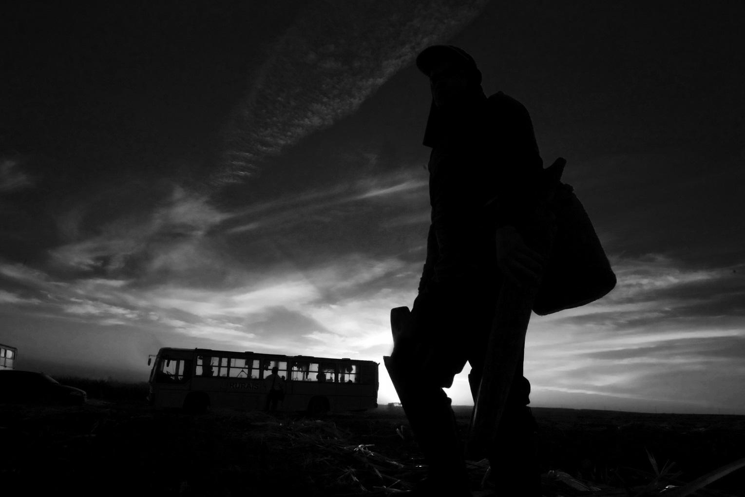 Em 2018, a pecuária bovina liderou as estatísticas das empresas relacionadas à lista suja, repetindo o que se verifica ao longo de toda a série histórica. Foto João Roberto Ripper