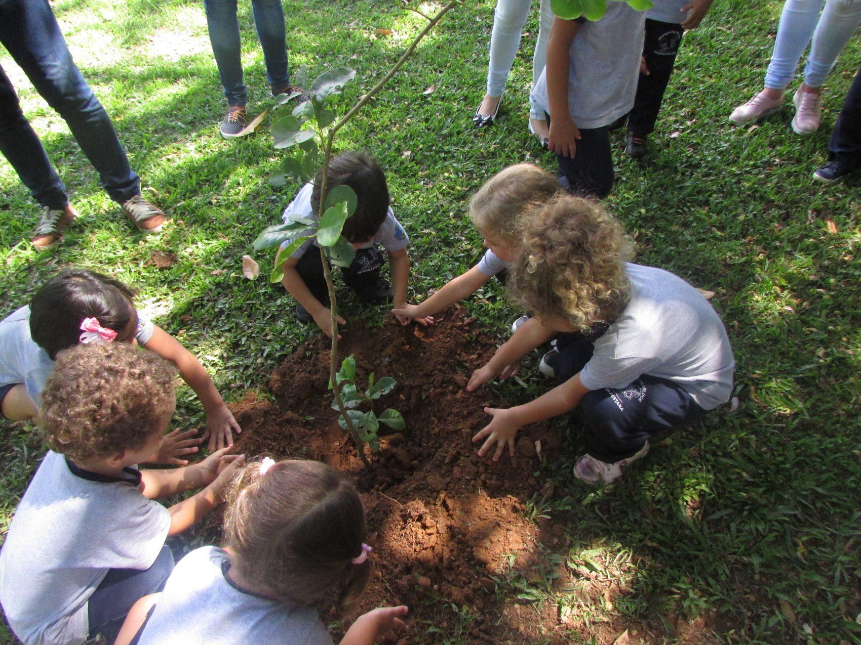 Crianças no programa Reflorestamento: plantio de mudas (Foto: Divulgação)