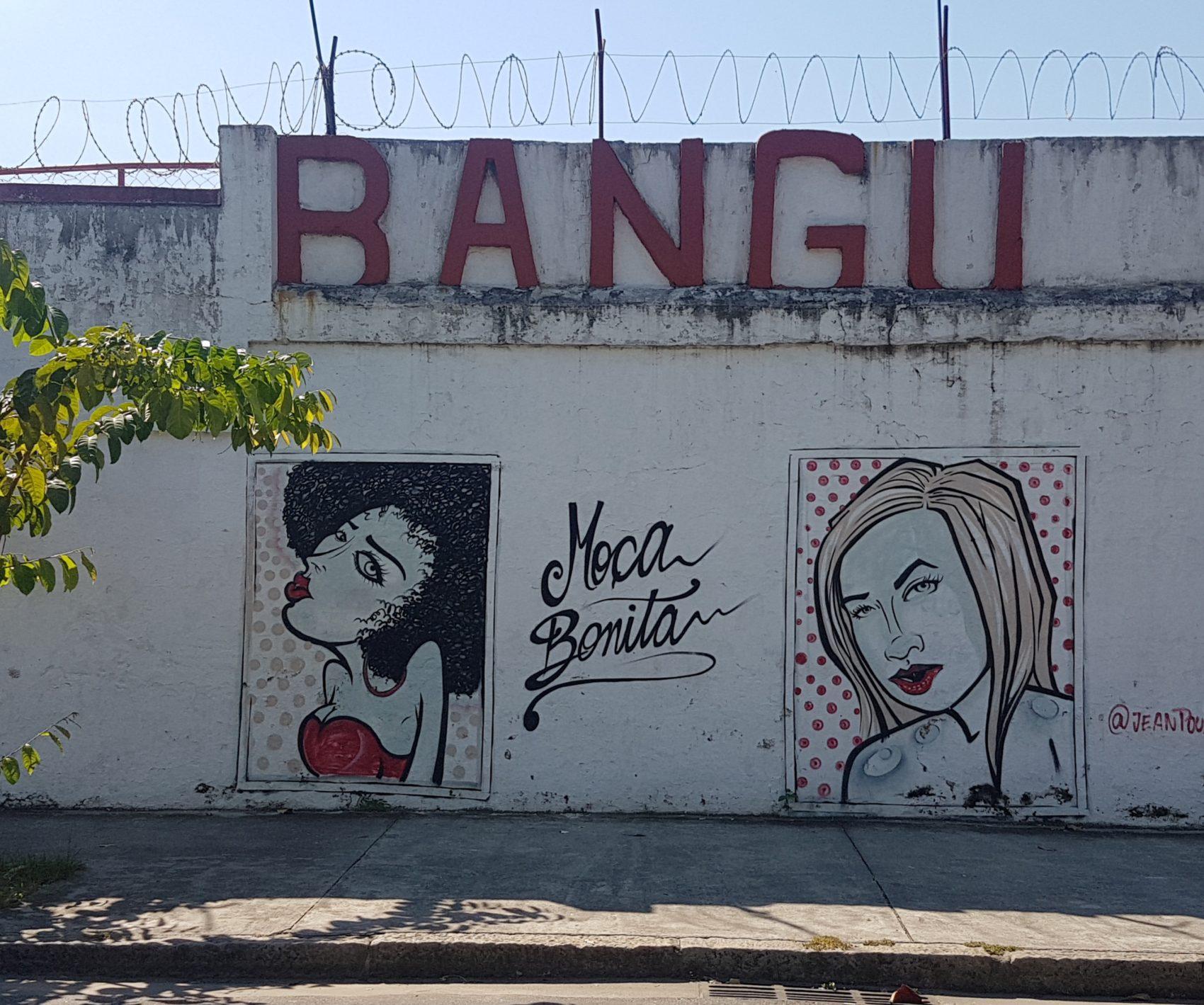 As molas bonitas pintadas no muro do Estádio Proletário Guilherme da Silveira: parte da história do Bangu e de Bangu (Foto: Oscar Valporto)