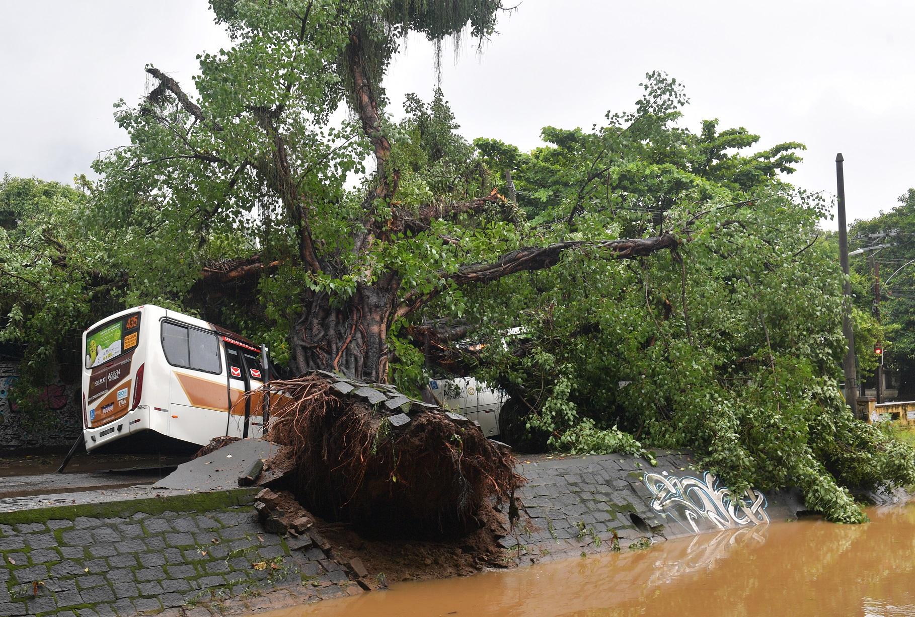 Ônibus atingido por uma árvore durante as fortes chuvas que atingiram o Rio na última segunda-feira. Foto Carl de Souza