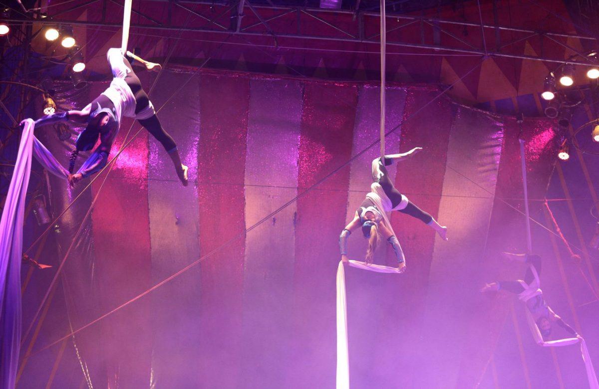 Espetáculos de uma hora e meia apresentados, gratuitamente, no núcleo principal do UniCirco, na Quinta da Boa Vista atraem público de todas as idades (Foto: Renee Rocha)