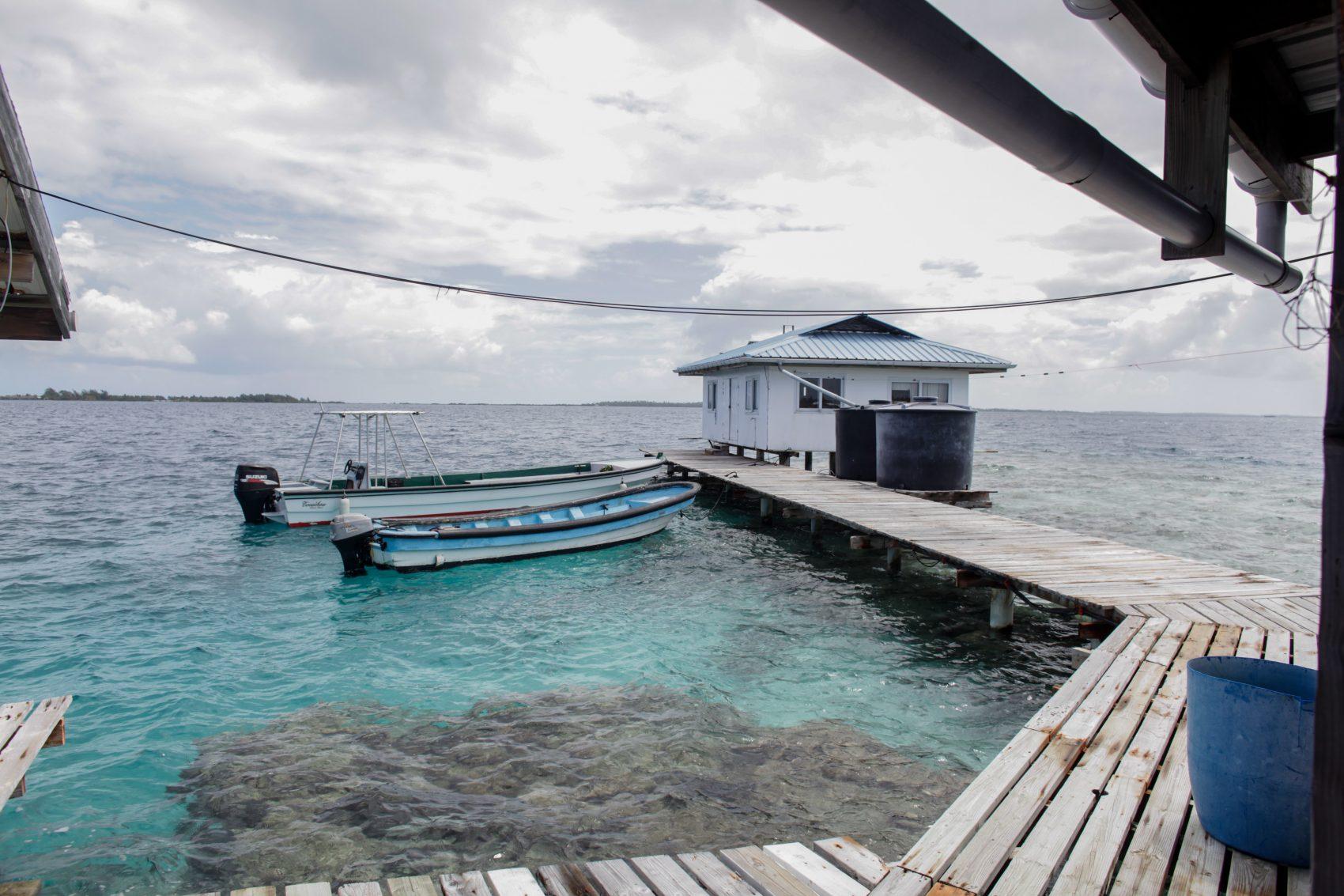 Fazenda de ostras na Polinésia Francesa, 118 ilhas ameaçadas pelo aquecimento global: ex-ministro criou projeto de ilhas flutuantes (Foto GREGORY BOISSY/ AFP)
