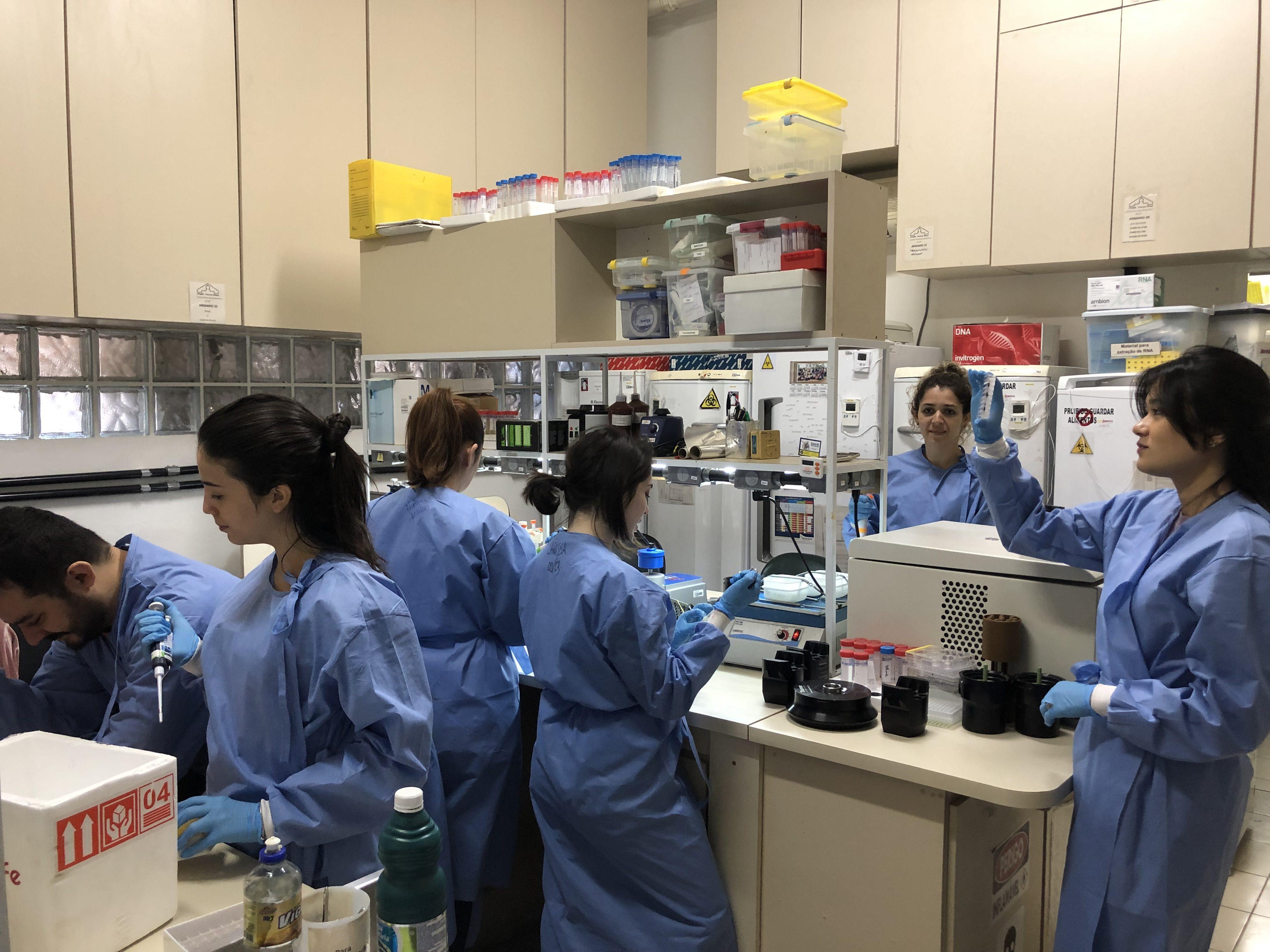 O INCT-Vacinas engloba 25 grupos de pesquisadores do Rio, São Paulo e outros estados. Foto Divulgação