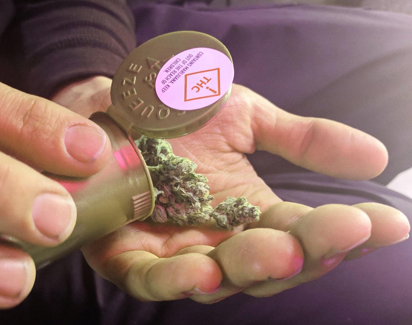 A lei obriga os produtores a indicar na embalagem as informações sobre o teor de THC (tetraidrocanabinol). Foto Wikimedia Commons