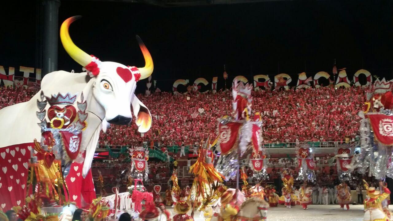 O boi Garantido no bumbódromo do Festival de Parintins: uma das festas mais importantes do país. Foto de Bianca Paiva (Agência Brasil)