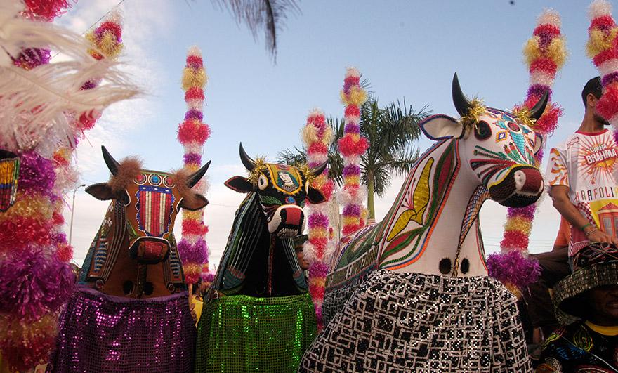 Bumba meu boi: patrimônio cultural que tem influência indígena e africana. Foto de Edgar Rocha (Iphan)