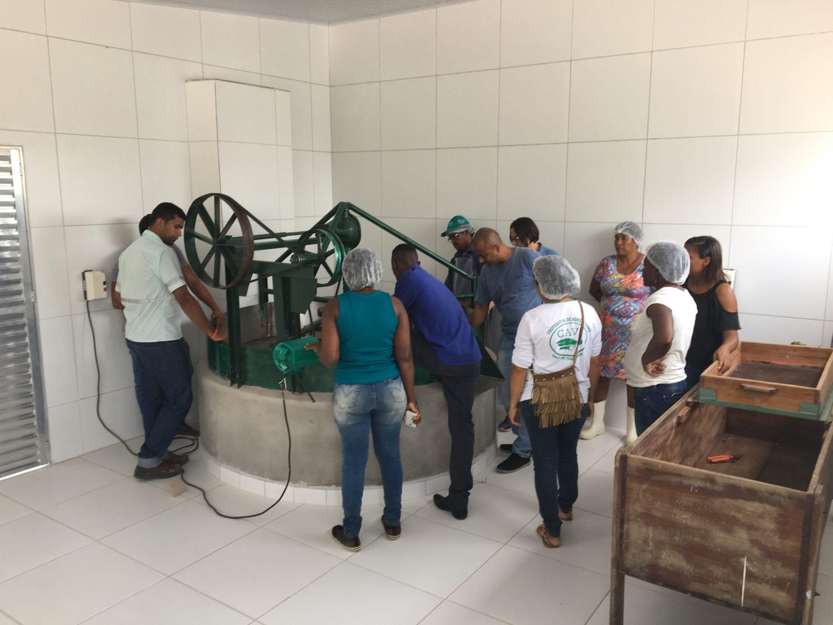 Farinheira Sustentável em funcionamento após projeto com pesquisadores da UFSB: reaproveitamento de resíduos da mandioca para novos produtos (Foto: Divulgação)