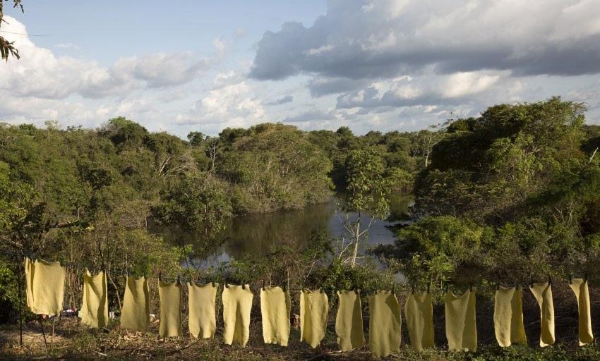 Mantas de borracha das comunidades extrativistas secam ao sol. Foto Otávio Almeida/ISA