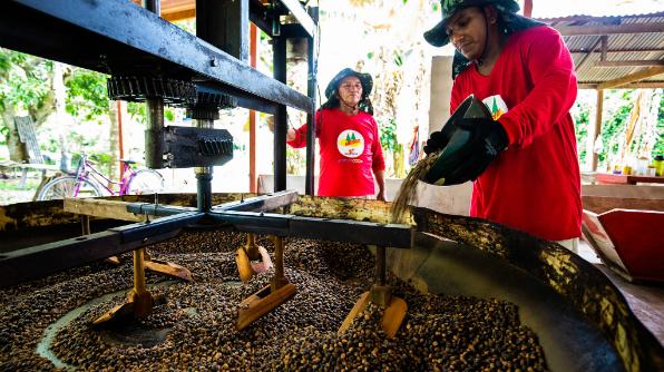 O guaraná é torrado para depois ser ensacado e entregue para a Cooperativa de Urucará (Foto: Bruno Zanardo)