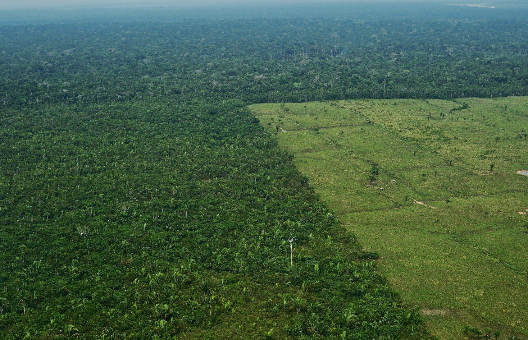 Vista aérea de área desmatada da Amazônia: pesquisadores da UFV provam relação dentre derrubada da floresta e regimes de chuvas na região (Foto: Carl de Souza/AFP)