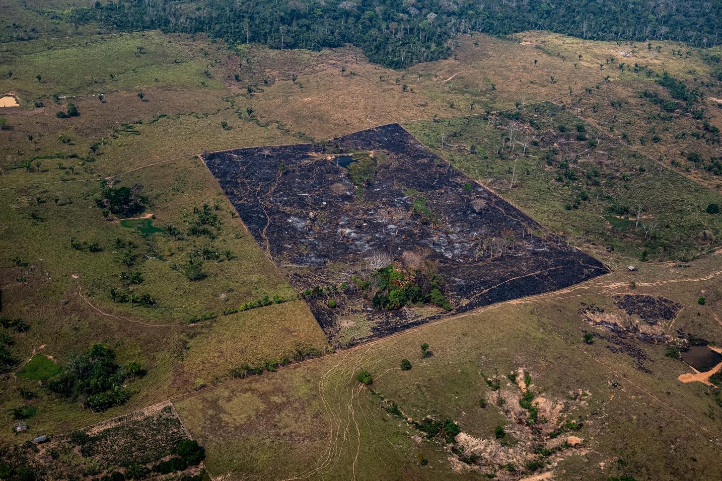 Como uma colcha de retalhos, a Amazônia perde parte da sua exuberância em troca do lucro de curto prazo. Foto Marcio Pimenta