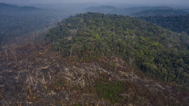 Imagem de desmatamento e queimada na terra indígena Uru-Eu Wau-Wau, na região conhecida como Grotão, em Campo Novo de Rondônia.Foto Marizilda Cruppe
